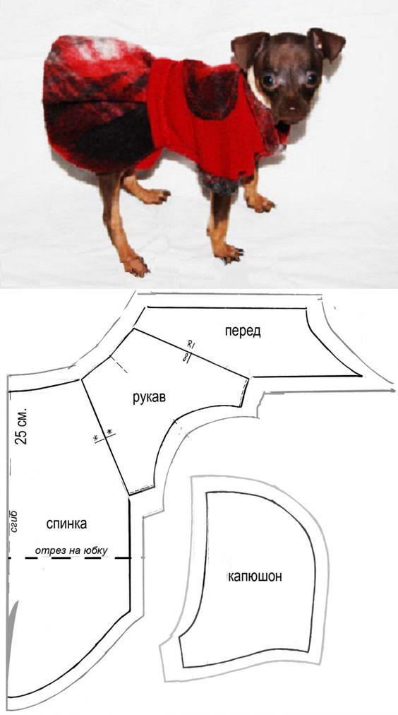 patron para mascotas